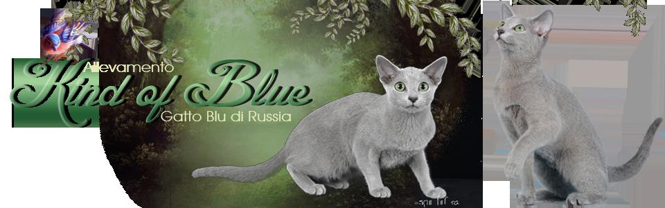 Kind of Blue -